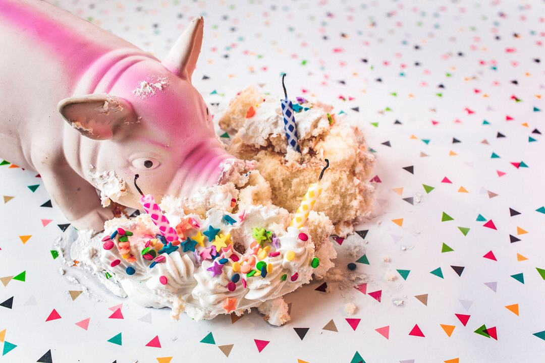 Party pig cake smash with confetti